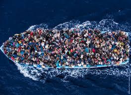 berconi profughi